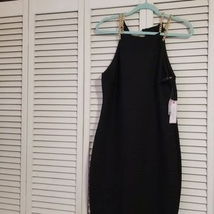 NWT Bisou Bisou Dress